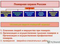 Виды пожарной охраны в Российской федерации