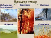 В число природных пожаров не входят